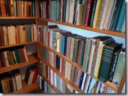 Bookshelves 2