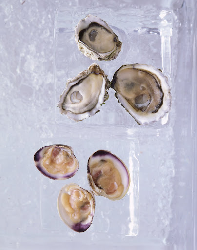 Clams and oysters on the half shell are served on ice blocks.