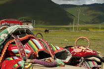 Tibetan horse sadle in the hills near Shangri-la