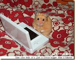 hamster_ds_seattle_roll_lg