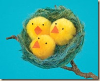 nest-o-fluffy-chicks-easter-craft-photo-260-FF0308CRAFTA03