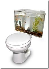 toilet-aquarium