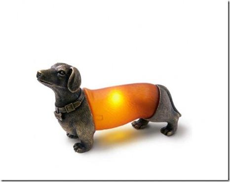 6dashund-495x386