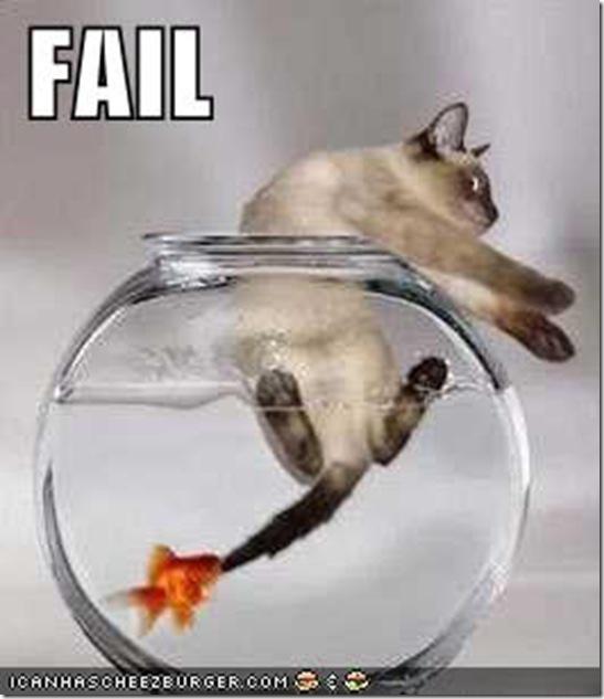fail (55)