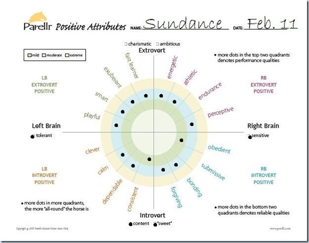 Positive Attributes Chart Sundance