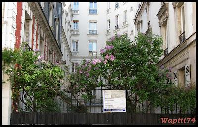 Une semaine printannière à Paris Dulac2