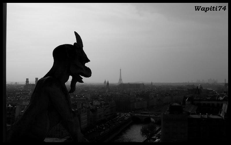 Paris en couleurs , Paris en noir et blanc ! 48.Notre-Dame