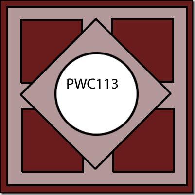 PWC113