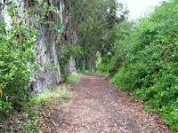 Lex to Hick Trail 085.JPG