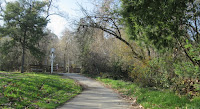 Los Gatos Trail 089.JPG