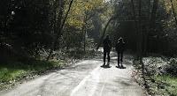 Los Gatos Trail 095.JPG