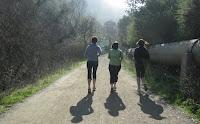 Los Gatos Trail 141.JPG