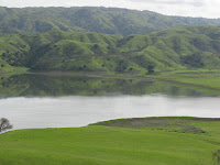 cal res 004.JPG Photo