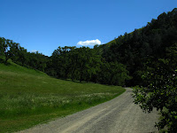 Sunol Regional Wilderness Hike 012.JPG Photo