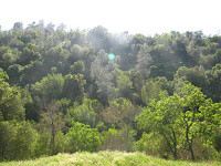 Sunol Regional Wilderness Hike 015.JPG Photo