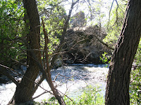 Sunol Regional Wilderness Hike 089.JPG Photo