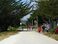 Pacific Grove Trail 049.JPG Photo