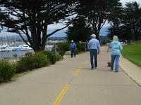 Pacific Grove Trail 371.JPG