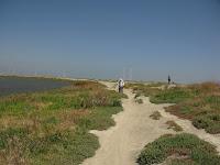 Shoreline and Palo Alto Bike Ride 144.JPG