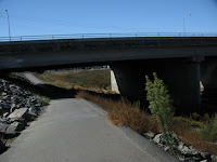 Alameda Crk Bike Trail Loop 020.JPG