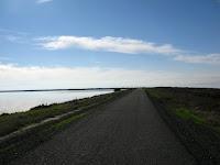 Alameda Crk Trail Ride 071.JPG