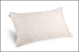 Aloe Dream Mate Pillow
