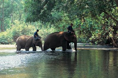 السياحة في شنغماي ، تايلند