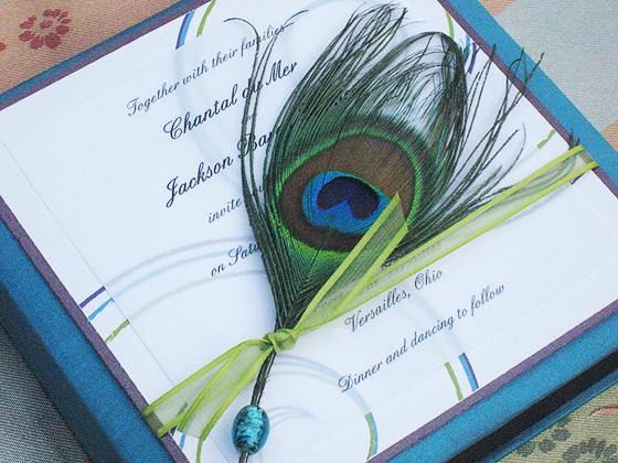 peacock silk box invitation