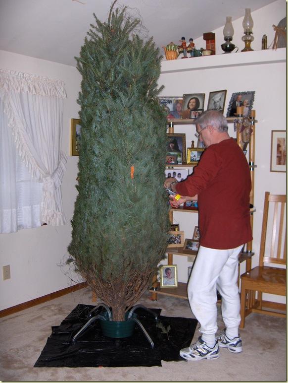 ChristmasandTreeTriming 175