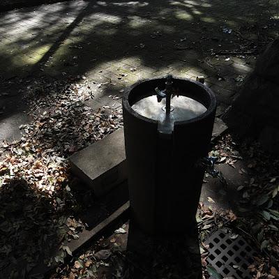 水飲み場:平塚市博物館あたり
