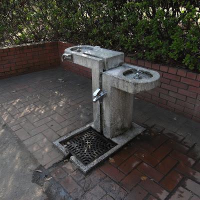 水飲み場:有栖川公園