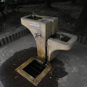 水飲み場:生田緑地