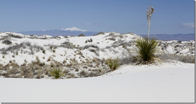 White Sands with Colleen 3-10 087