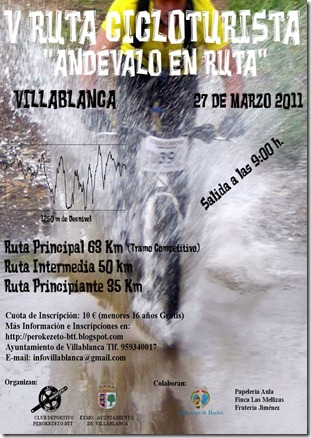 CartelCiclo2011-A3