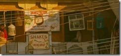 Darjeeling Limited 30