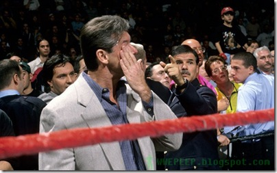 19 Bret Hart vince