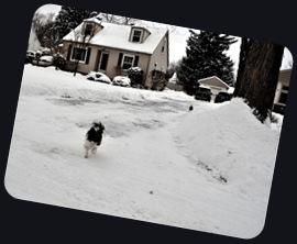 snow2011c
