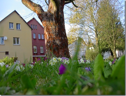 Bibsgarten 004