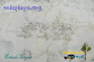 Playa Greysmar V032 (Los Caracas), Estado Vargas, Venezuela