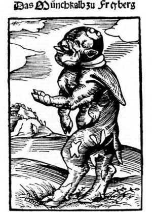 Монах-бычок