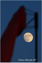 Almost full Moon-March_6930