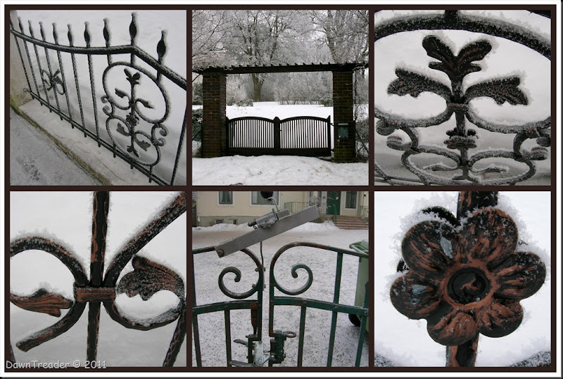 2011-01-31 frosty gates and fences