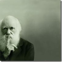 darwin-bg