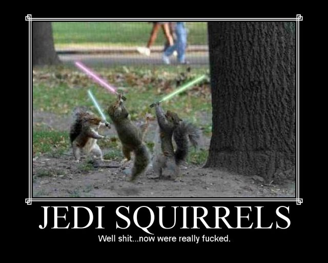 jedi squirrels  motivational poster