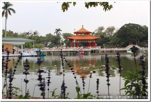 Tainan_Park_flower21