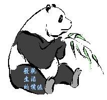 Panda10