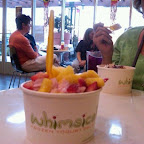 whimsical frozen yogurt of menifee