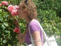 Nikitskiy botanicheskiy sad