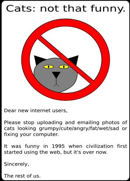 messagefromthecats