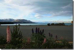 De Milford al lago Tekapo 022